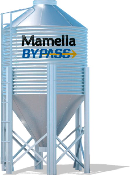 Mamella By Pass 24%
